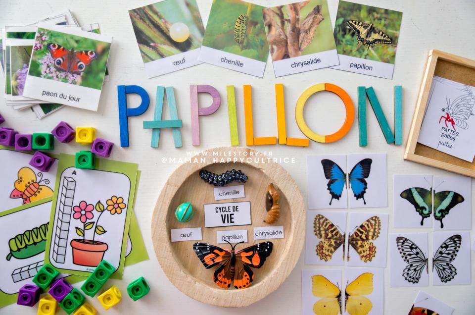 Activités papillons maternelle + Cartes de nomenclature papillons à imprimer