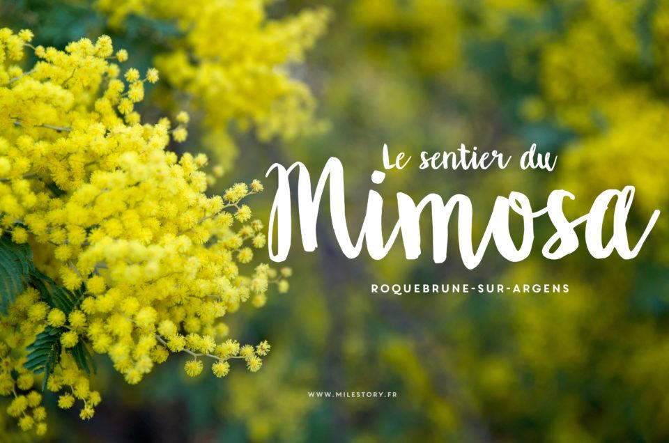 Le sentier du Mimosa à Roquebrune-sur-Argens