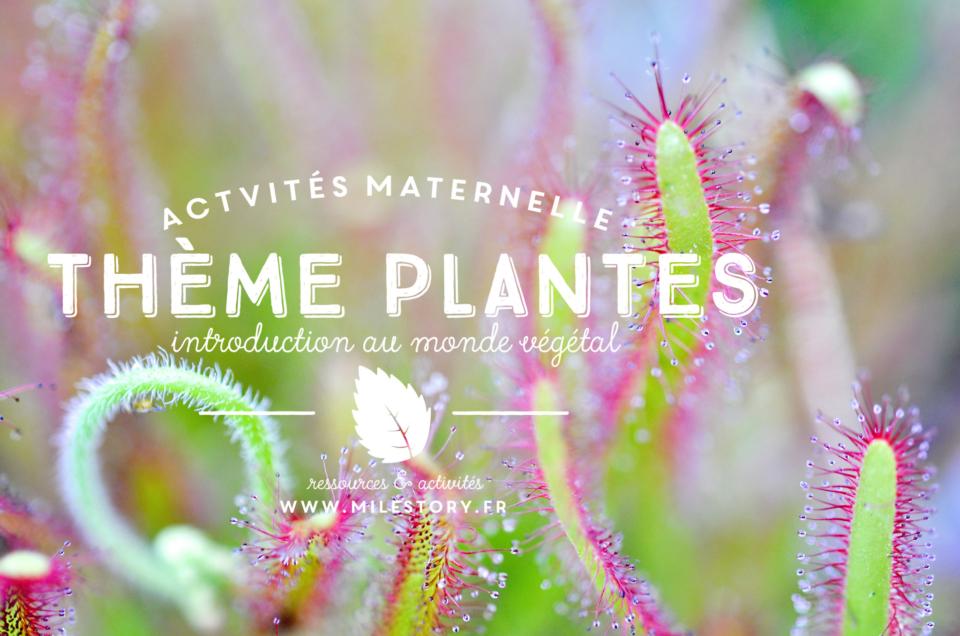 Livres et activités sur les plantes : introduction au monde végétal