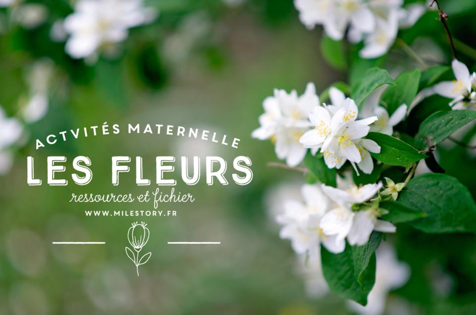 Livres et activités sur les fleurs en maternelle