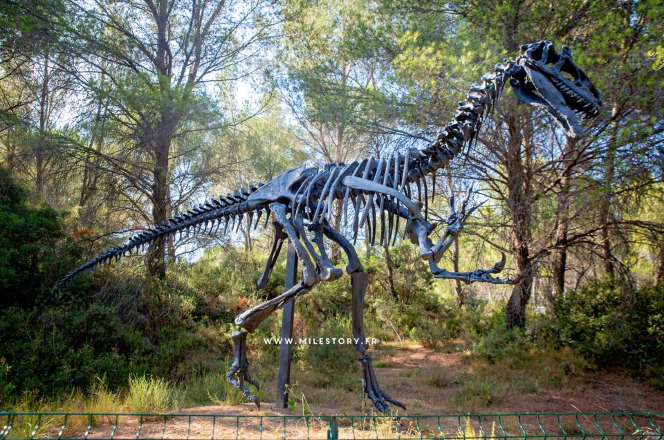 {sortie pédagogique} Le Musée des Dinosaures et de la Préhistoire de Mèze