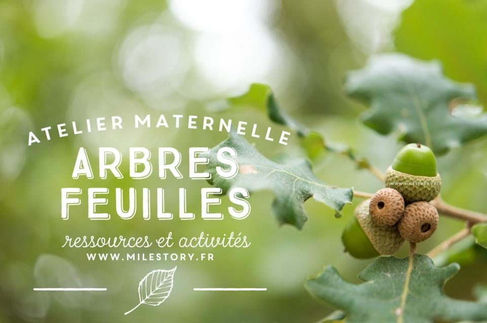 IEF maternelle coschooling – Livres et activités sur les arbres, les feuilles, la forêt