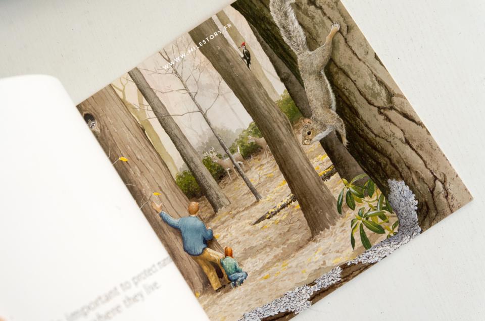 Apprendre l'anglais en maternelle avec des livres sur la nature