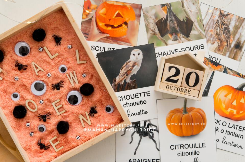 Récap Activités Halloween Maternelle – ief coschooling