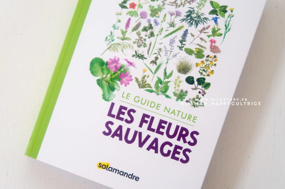 Un livre pour identifier les fleurs sauvages + fichier à télécharger cherche et trouve