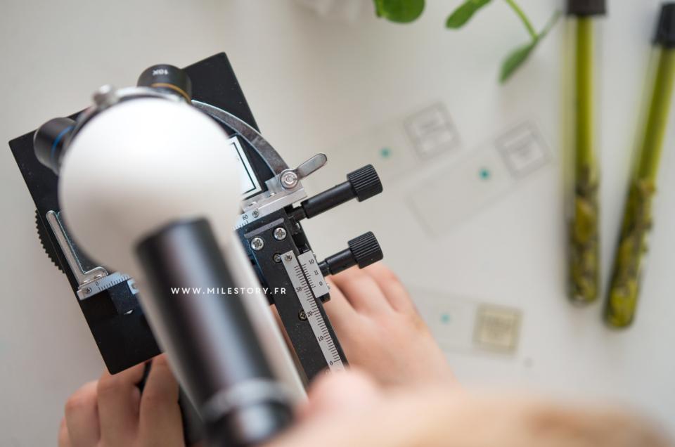 Quel microscope choisir pour son enfant ?
