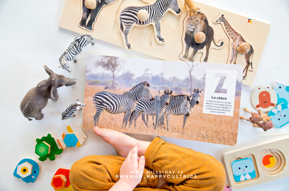 Livre abécédaire imagier des animaux