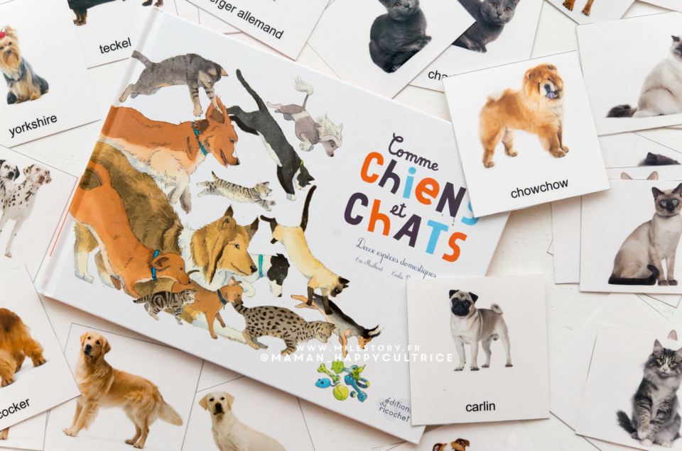 un livre documentaire sur les chiens et les chats