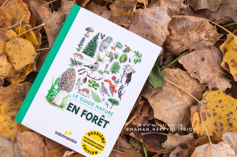 Guide nature en forêt