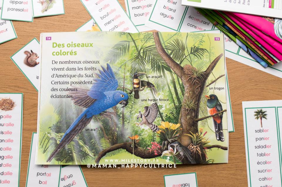 Français ce1 : série verte Montessori + manuels et livres pour fluidifier la lecture